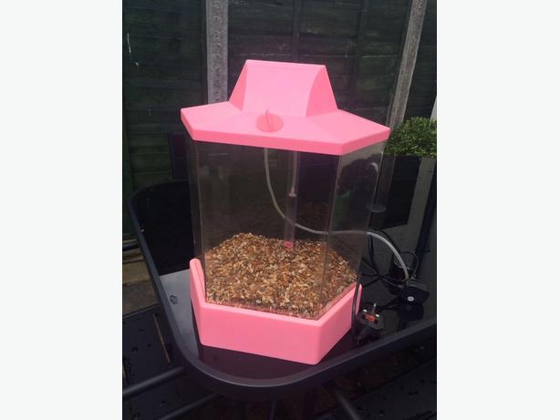 Pink fish tank wolverhampton dudley for Pink fish tank