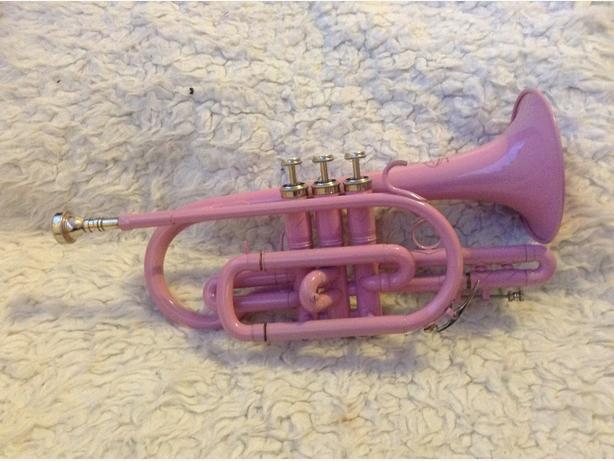 Pink cornet