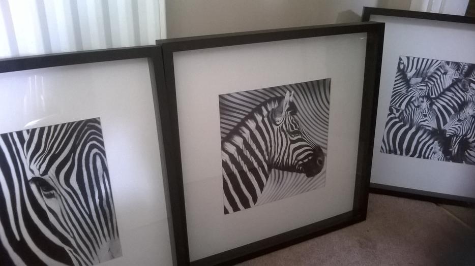 Постер зебра в икеа