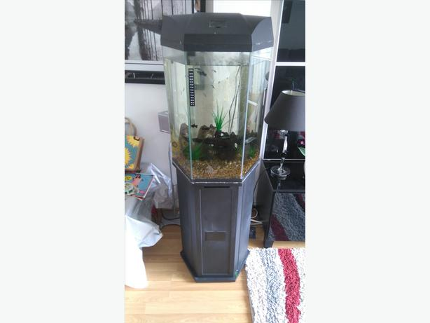 Hexagon fish tank willenhall wolverhampton for Snap on fish tank