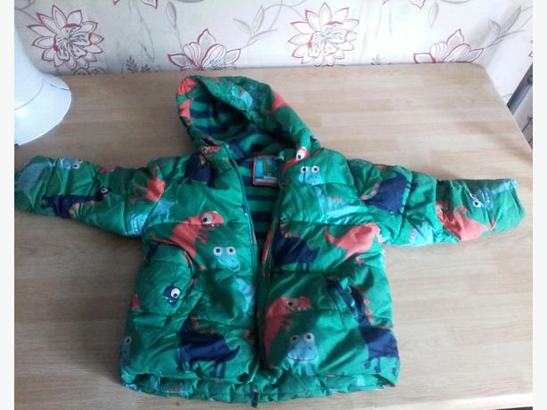 Next dinosaur coat