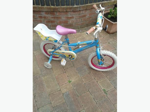 sweet bug bike