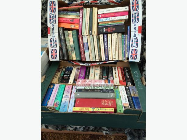 job lot 80 books