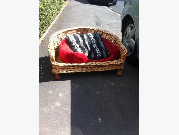 dog basket and harness
