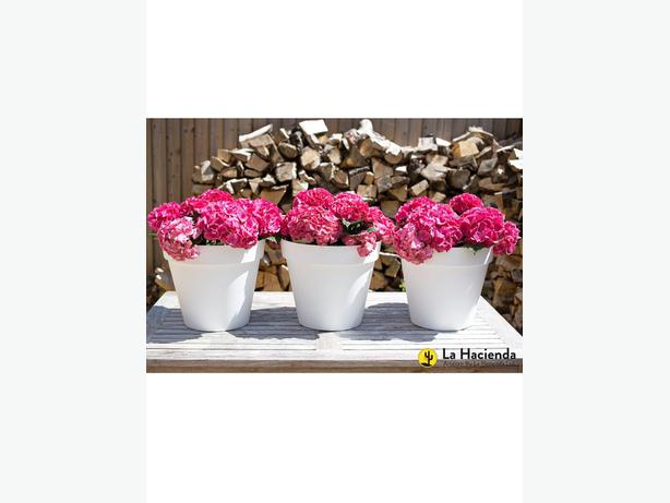 La Hacienda Set of 3 x 40cm Eco-Friendly pots