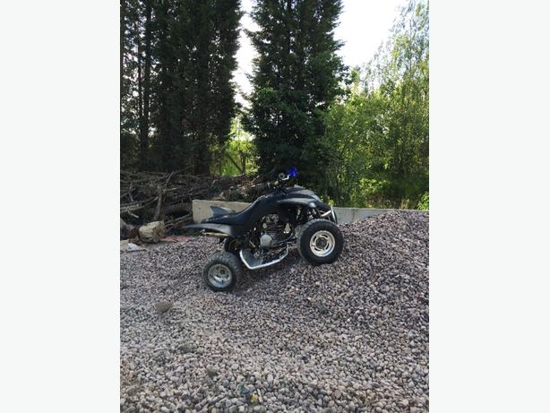 quadzilla 300 with reverse