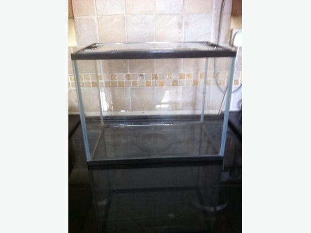Small glass fish reptile tank willenhall dudley for Small glass fish tank