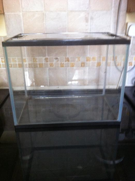 Small glass fish reptile tank willenhall sandwell for Small glass fish tank