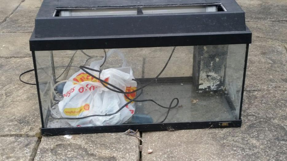 2ft fish tank walsall wolverhampton for Used fish tanks for sale many sizes