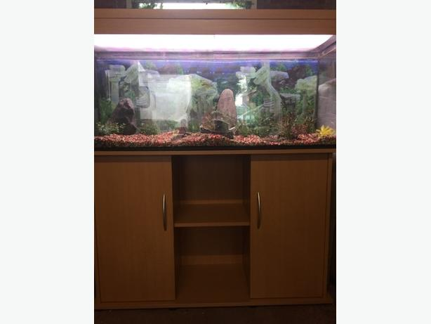 4ft juwel aquarium