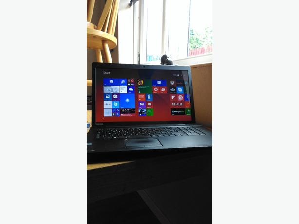 Toshiba laptop 17.3 screen