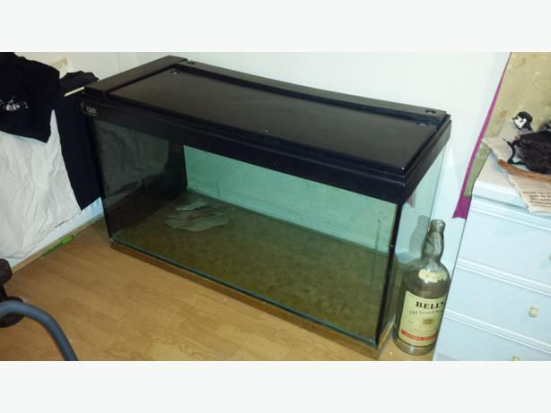 Large fish tank hold 380 litres large external fluval 403 filter