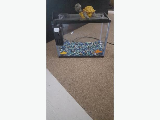 Fish tank suitable for 1 fish