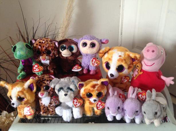 beanie boos job lot