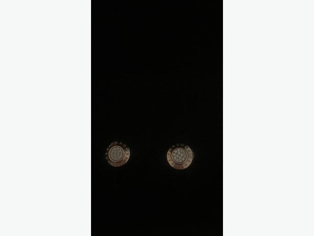 Pandora ear rings