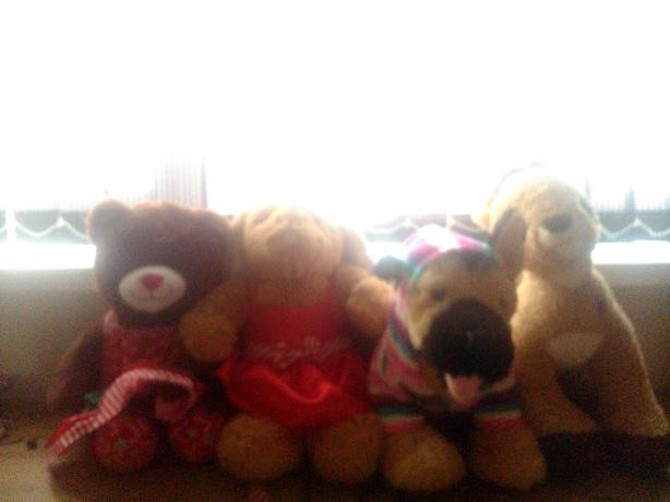 bear factory bears