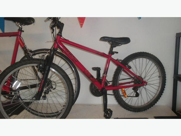 Rockrider hardtail mountain bike  £40