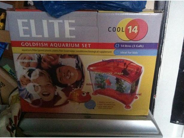 Elite cool 14 aquaqrium west bromwich wolverhampton for Tap tap fish corgi