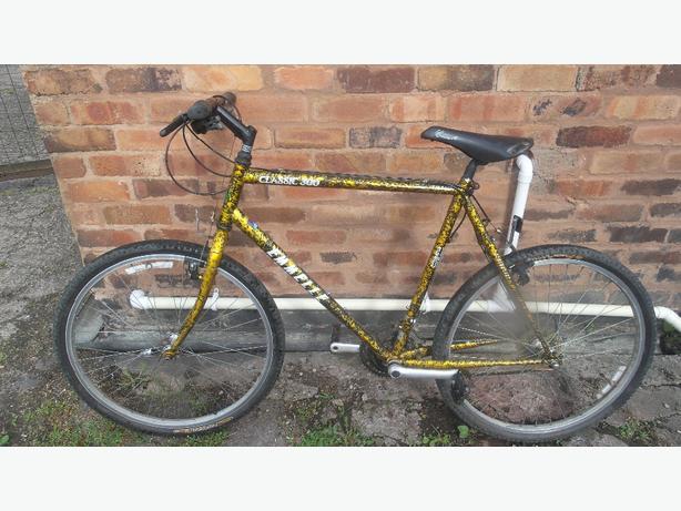 Emmelle Classic 300 21 geared mountain bike  £40