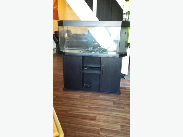 4ft fishtl tank