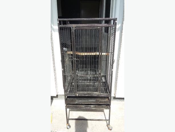 black parrot cage
