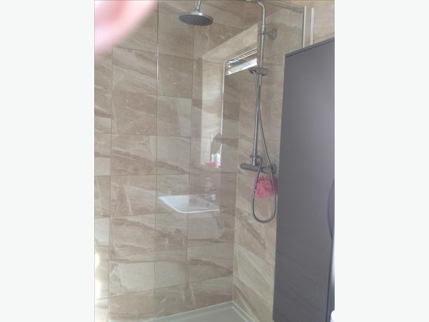 Shower screen suitable for wet room or shower tray