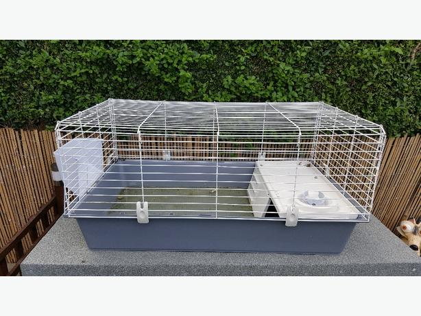 Guinea pig cages in wolverhampton mobile for Small guinea pig cages for sale