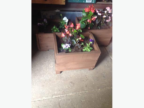garden planters inc plants