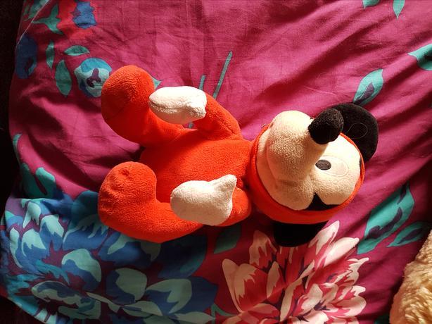Lovely teddys
