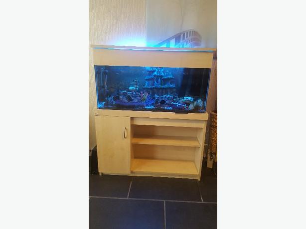 3x1 ft fish tank