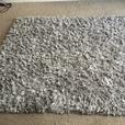 plush/silver rug