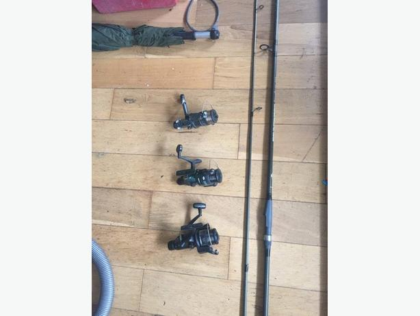 carping rod