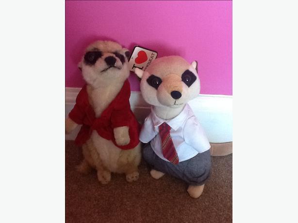 2 meerkat teddies