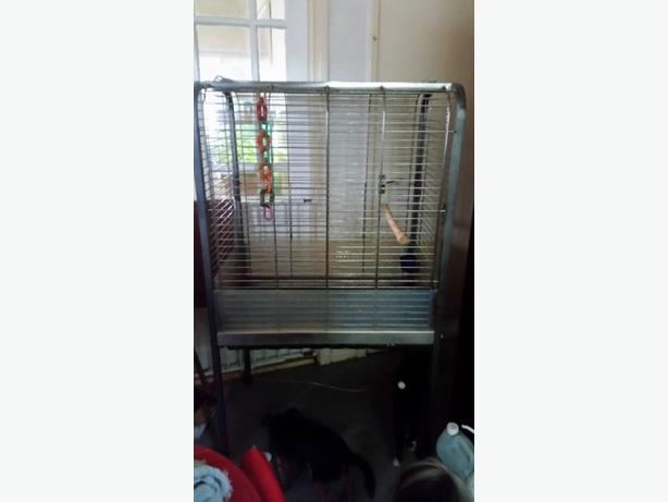 large silver parrot cage