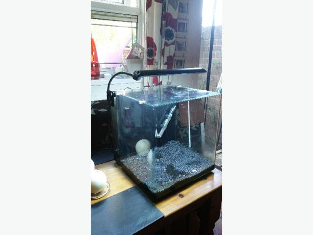 aqua one fishtank