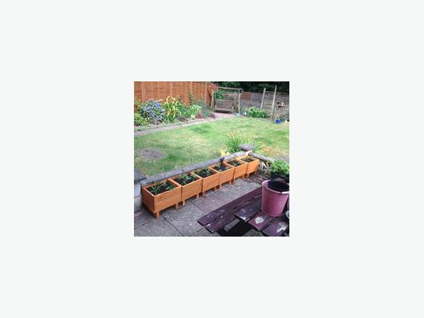 4 garden planters inc plants and fully lined
