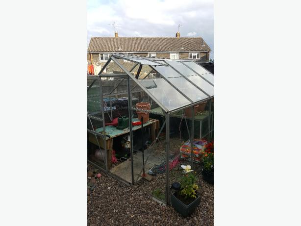 Iav got a 8x6 glass greenhouse want to swap for 8x6 shed or sell green house