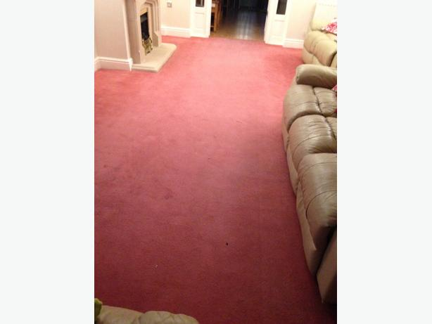 pink lounge carpet