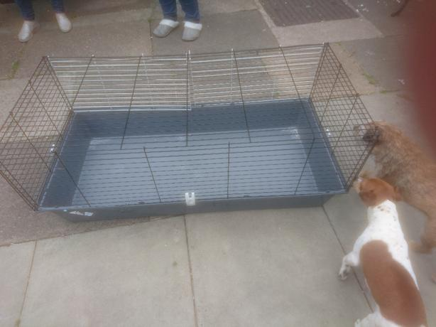 Pet metal cage with plastic bottom