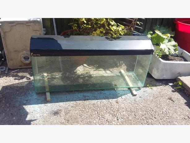 fish tank need gone £50