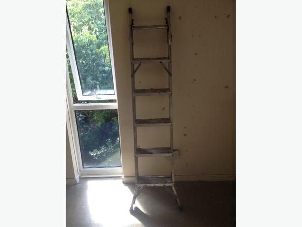 2 way Combination Ladder