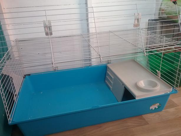 Rabbit cage or guinea pig