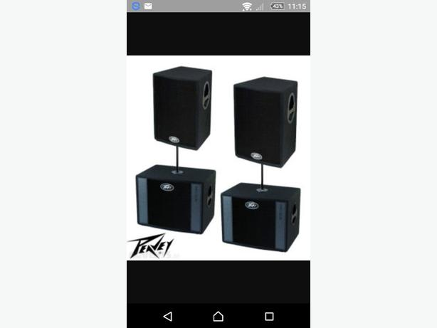 peavey disco speakers