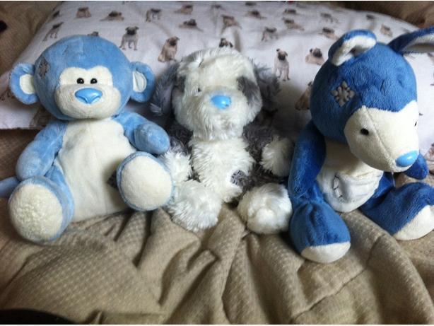 Blue Nose Friend Beanies