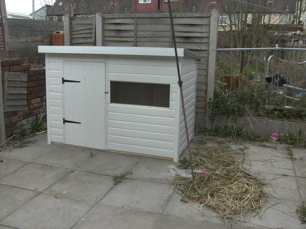 5x4x4 feet high dog pen new upvc
