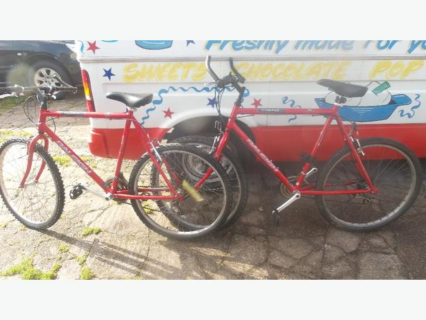 Raleigh Firefly mountain bikes X2 £45 each