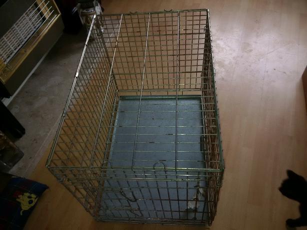 metal dog cage