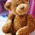 2 X brown bear teddies