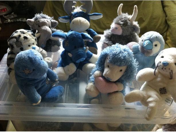 Blue Nose Friends x9