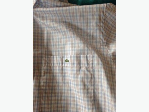 Men's Lacoste shirt short sleeve size large